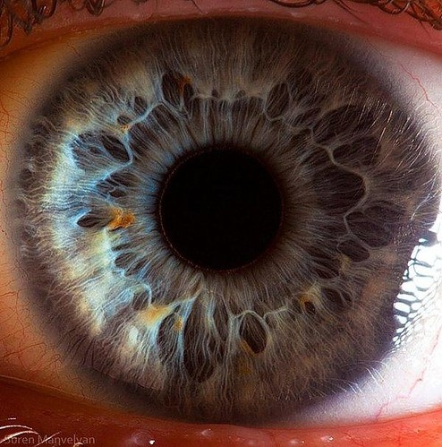 augen, blue eyes, endless stare, eye, eyeball, eyes, inspiring, macro, photography