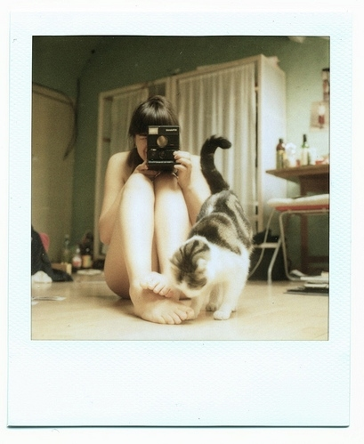 baby cat, camera, cameras, cat, cool, cute, feet, girl, home, kitty, photografy, polaroid