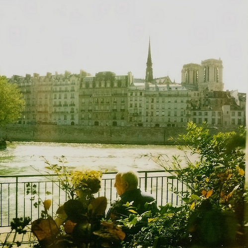 afternoon, apartments, architecture, buildings, city, notre dame, old couple, paris, plants, polaroid