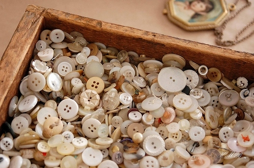 buttons, cameo, collection, cream, fashion, necklace