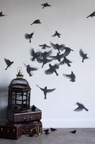 bird, birdcage, birds, cage, decor, escape