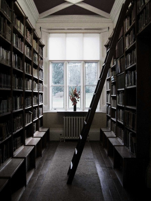 books, bookshelves, flowers, home, interior, ladder