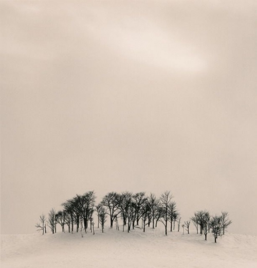 ambient, art, black and white, blackandwhite, brume, horizon, michael kenna, michaelkenna, minimal, minimalism, monochrome, photography, photos, snow, tree, trees, winter