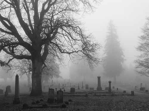 black, black and white, cemetary, cemetery, fog, graveyard