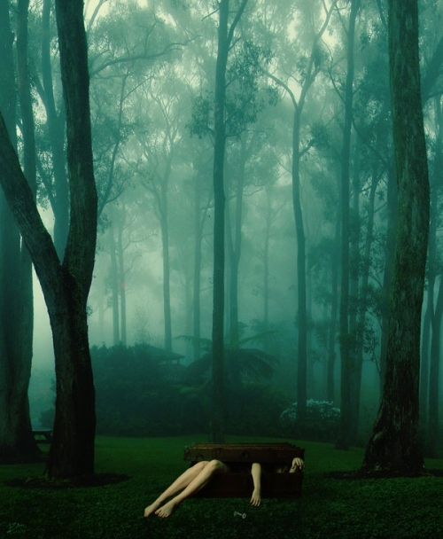 aqua, dark, deviantart, fog, forest, green