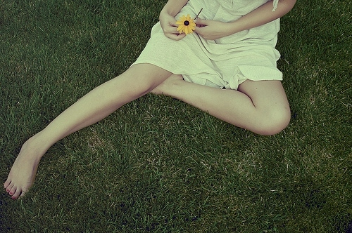 daisy, flower, girl, grass, green, legs