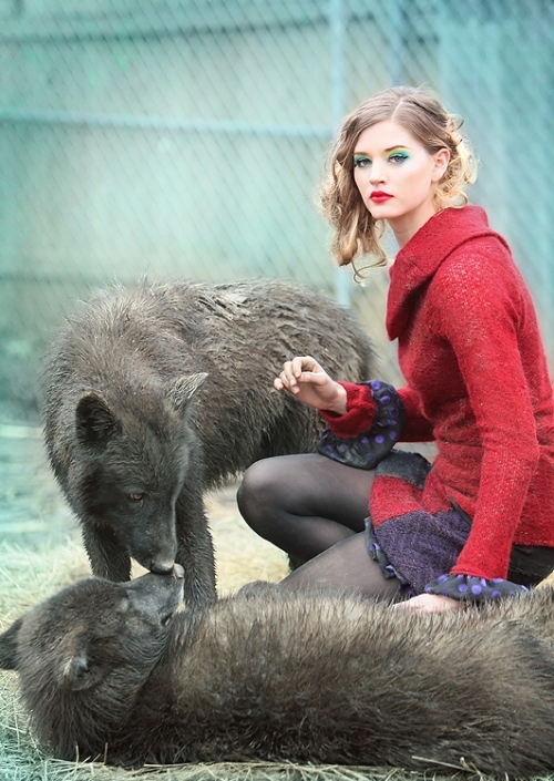 animals, blond, girl, red, wolf, wolves