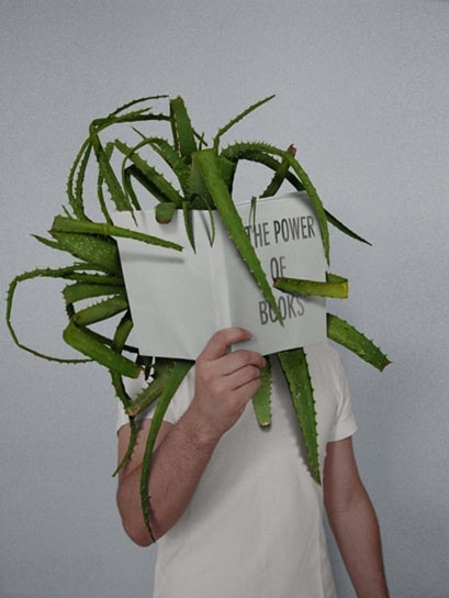 art, book, cactus, design, funny, house plant