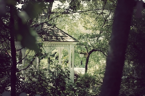 garden, gazebo, green, outdoors, shabby chic