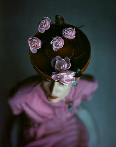 colors, fashion, flowers, foto, hat, john rawlings, model, photography, pink, purple, roses, vintage, woman