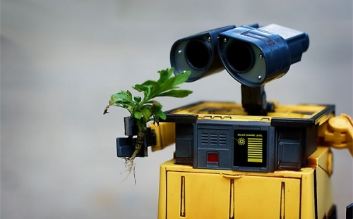 desktop, photo, photography, plant, robot, robots, toy, wallpaper
