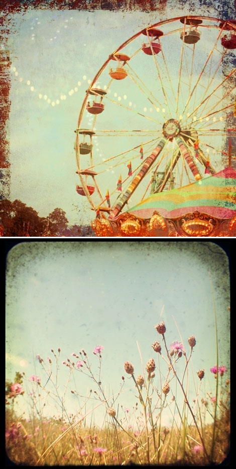 alicia bock, carnaval, flower, images, images of summer, photo illustration, photography, pola