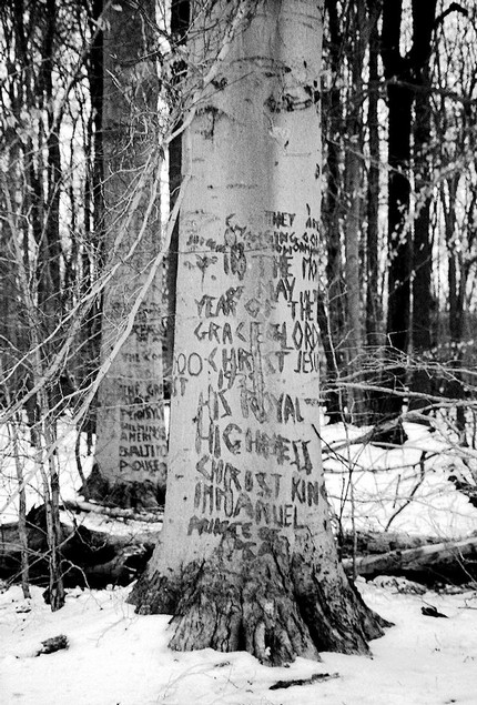 Black and white carving forest mental illness