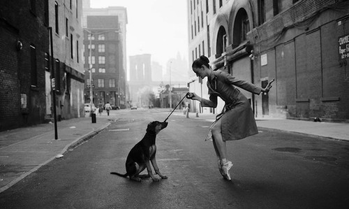 ????? ????, art, ballerina, ballet, ballet dancer, black and white, city, dog, girl, nyc, perspectiva, photo, street