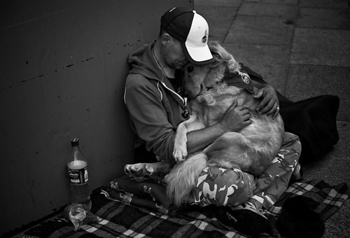 art, black and white, cute, dog, hold, intimacy
