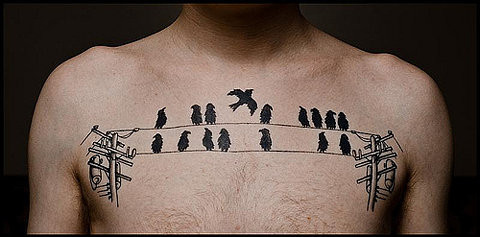 art, bird, bird tattoo, birds, birds on chest tatto, chest, drawing, ffffound, hermoso !, man, tattoo