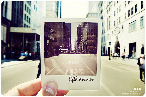 5th avenue, avenue, city, clever, cool, creative