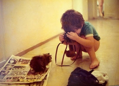 boy, camera, cat, child, cute, kid