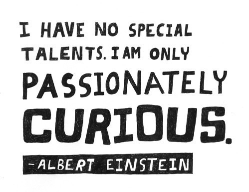 agree, albert einstein, curious, einstein quote, inspiration, intelligence