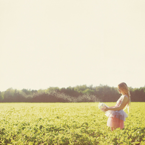 fairy, fairy tale, field, fields, girl, girlie