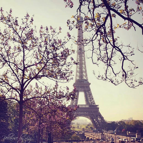 beautiful, beauty, color, different, effiel tower, eiffel