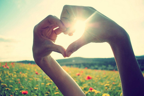 color, field, flowers, hands, heart, heart photography, love, nature, photo, sensual, summer, summer love, sunrise, sunshine
