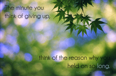 give up, giving up inspirational quote, green, inspiring, life, love, quote, tree, true, words, truth, saying pics