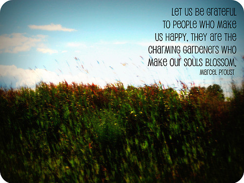 be grateful, happy, inspirational, people, photography, poetry, proverb, souls, soul, quotes, quote, typography, text, words