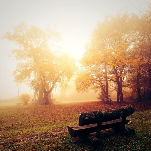 automn, autumn, bench, breath, emotive, fall