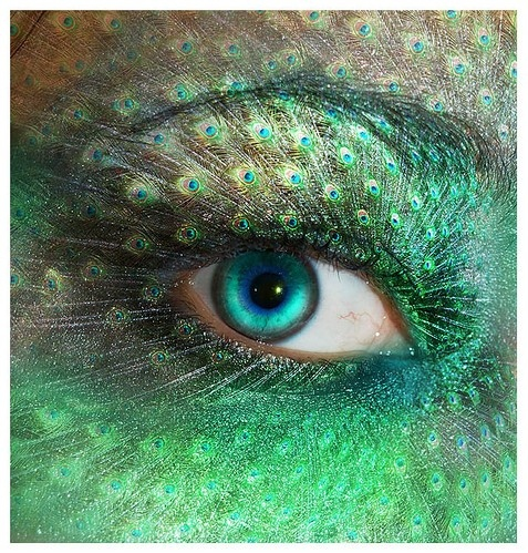 beautiful, digital art, eye, feathers, female, green, makeup, peacock, photography