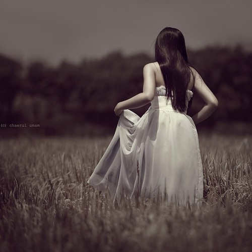 back to camera, black and white, dark hair, dress, field, girl