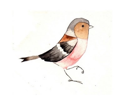 bird, birds, birdy, brown finch (watercolor), colorful, cute bird