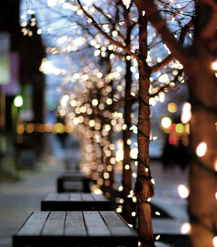 bench, bokeh, christmas, city, cityscape, dia