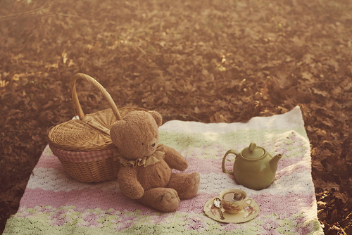 basket, bear, cup of tea, grass, picnic, tea, teapot, teddy bear