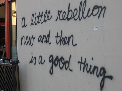 fun, graffiti, hehe, life, politics, quote