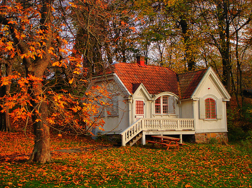 http://favim.com/orig/201105/12/autumn-cottage-leaves-orange-quaint-Favim.com-41362.jpg
