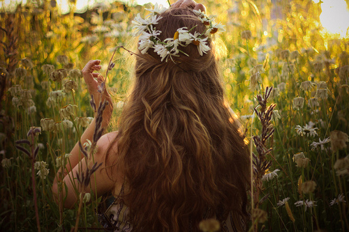 blonde, brown, colors, flowers, free, hair