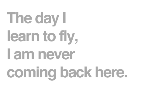 back, come back, fly, here, heve, never