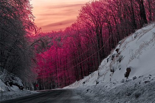 nature, pink, road, sky, snow, sunset