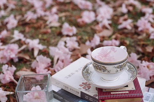 books, cup of tea, flowers, girlish, pink, tea