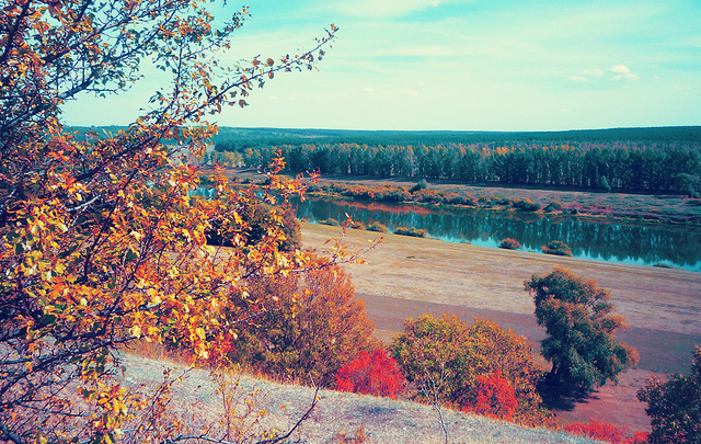 autumn, landscape, nature, pretty, red, river