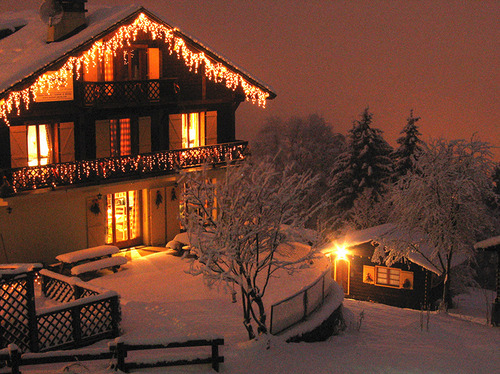 christmas lights, house, lights, pretty, snow, trees