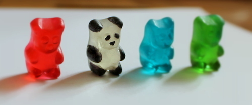 animals, awesome, bala de ursinho, bear, bears, blue