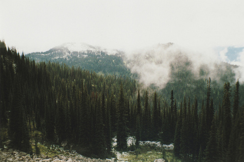 forest, hipster, indie, mountains, smoke, trees