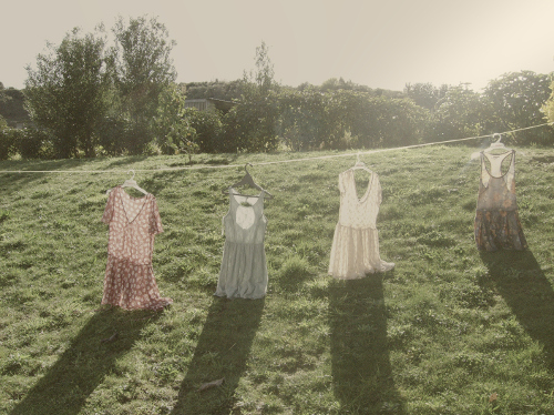 clothes, clothing, dress, dresses, fashion, field