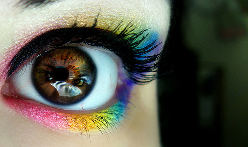 beautiful, blue, brown, color eye, colorful, eye