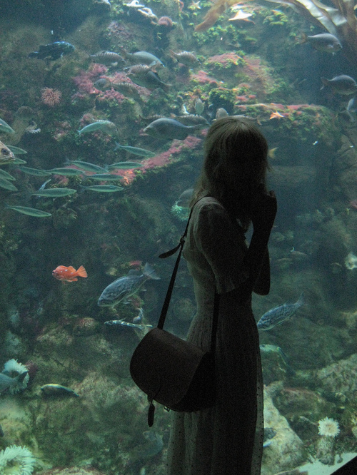 aquarium, dress, fashion, fish, girl, hipster