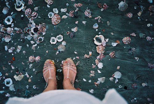 beach, feet, ground, legs, sandals, sea shells