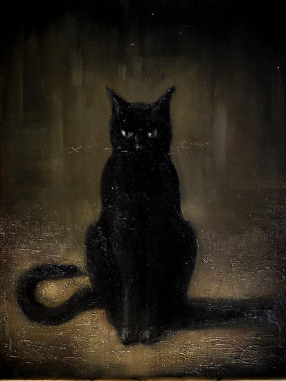 animals, black cat, cats, darkness, feline, friend