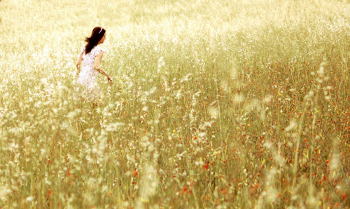 cute, field, free, freedom, girl, pretty